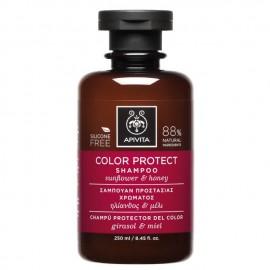 Apivita Σαμπουάν Προστασίας Χρώματος με Ηλίανθο και Μέλι, Color Protect Shampoo Sunflower & Honey, 250ml