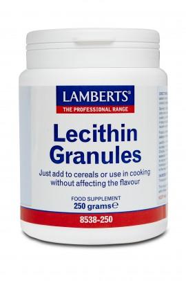 Lamberts Soya Lecithin Granules 250gr