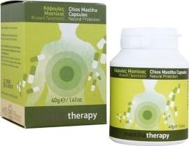 Pharmaq Mastiha Therapy Συμπλήρωμα Μαστίχας Χίου 350mg, 90 κάψουλες