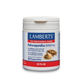 Lamberts Ashwagandha 6000mg Συμπλήρωμα Διατροφή Ασβαγκάντα για Ενίσχυση του Ανοσοποιητικού, 60 caps