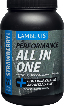LAMBERTS PERFORMANCE All-IN-ONE STRAWBERRY 1450gr