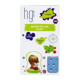 HG Poli Παιδικές Χειρουργικές Μάσκες 3 Στρώσεων για Αγόρι 3-6 Ετών Με Σχέδια, 10 Τεμάχια