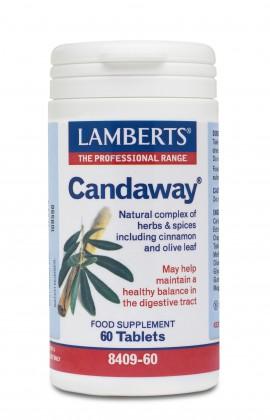 Lamberts Candaway 60 tabs